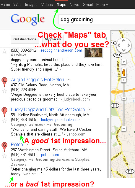 "Check the review snippets under the ""Maps"" tab"